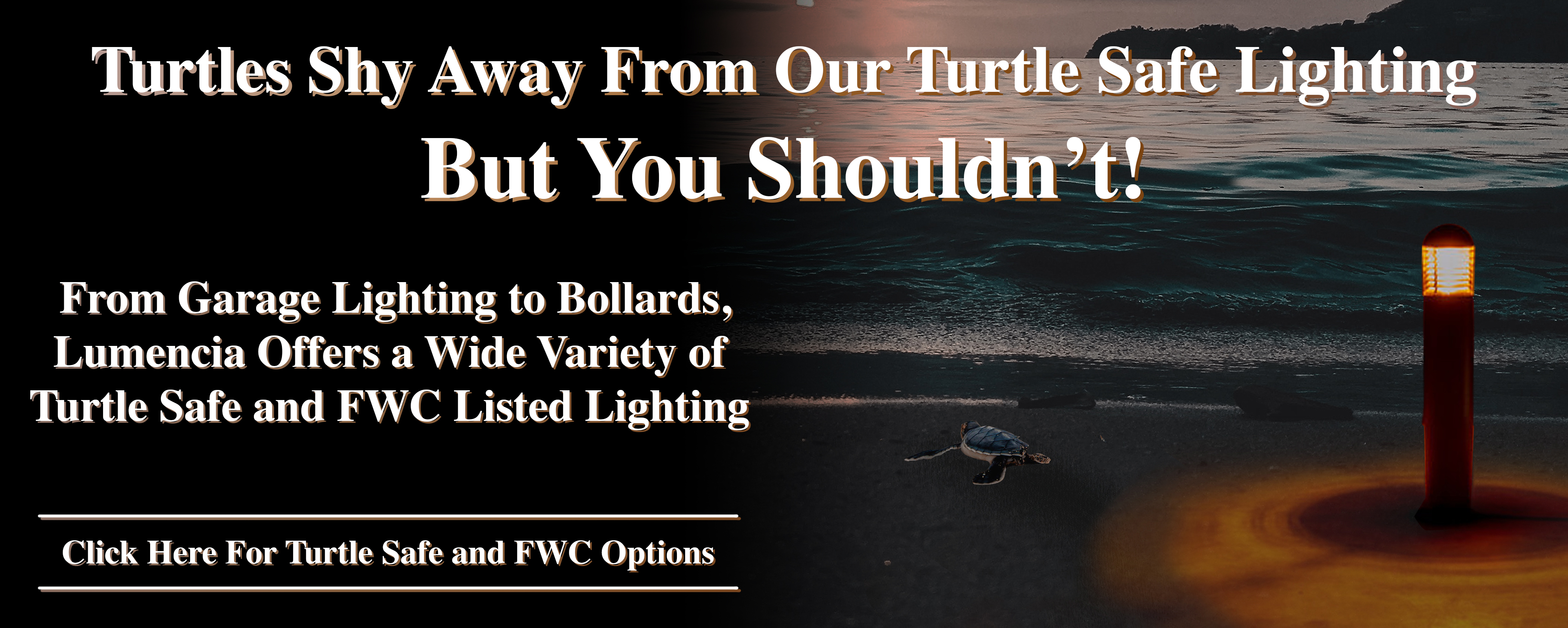 Turtles Shy Away From Our Turtle Safe Lighting